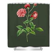 Rose113 Shower Curtain