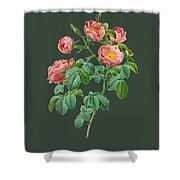 Rose114 Shower Curtain