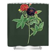 Rose121 Shower Curtain