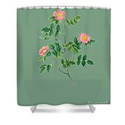 Rose123 Shower Curtain
