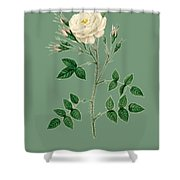 Rose125 Shower Curtain
