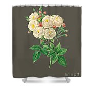 Rose126 Shower Curtain