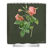 Rose128 Shower Curtain