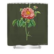Rose133 Shower Curtain