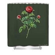 Rose134 Shower Curtain