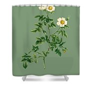 Rose135 Shower Curtain