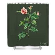 Rose136 Shower Curtain