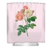 Rose155 Shower Curtain