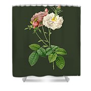 Rose57 Shower Curtain