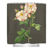 Rose59 Shower Curtain