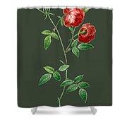 Rose65 Shower Curtain
