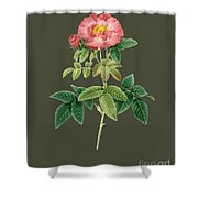 Rose79 Shower Curtain