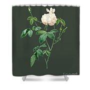 Rose80 Shower Curtain
