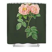 Rose82 Shower Curtain