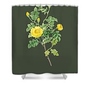 Rose86 Shower Curtain