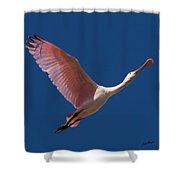 Roseate Flight Shower Curtain