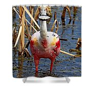 Roseate Spoonbill And Water Drops Shower Curtain