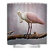 Roseate Spoonbill Costa Rica Shower Curtain