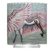 Roseate Spoonbill On The Foggy Laguna Madre Shower Curtain