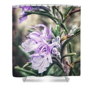 Rosemary Blooming Shower Curtain