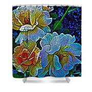 Roses Aglow Shower Curtain