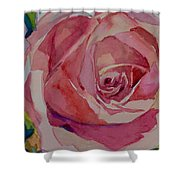 Roses And More  Shower Curtain