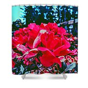 Roses At Mont Alto Shower Curtain