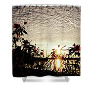 Roses At Sea Shower Curtain