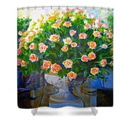 Roses At Table Bay Shower Curtain