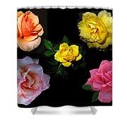Roses Beautiful Shower Curtain