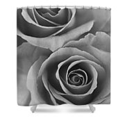 Roses Black And White Shower Curtain