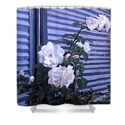 Roses De Lignes Bleues Shower Curtain