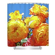 Roses Garden Summer Art Print Blue Sky Yellow Orange Shower Curtain