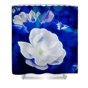 Roses In Bllue Shower Curtain