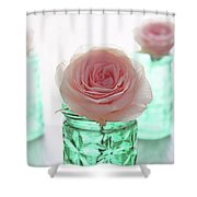 Roses In Green Jars Shower Curtain