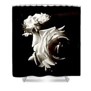 Roses In Moonlight 8 Shower Curtain