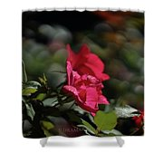 Roses In The Wind Shower Curtain