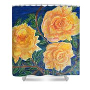 Roses In Yellow Shower Curtain