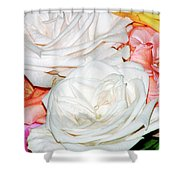 Roses Multi Color Shower Curtain