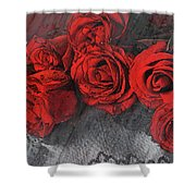 Roses On Lace Shower Curtain