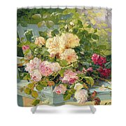 Roses On The Bench  Shower Curtain