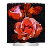 Roses Painted And Drawn Shower Curtain