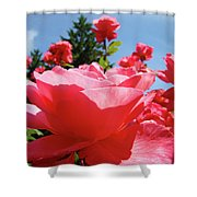 Roses Pink Rose Landscape Summer Blue Sky Art Prints Baslee Troutman Shower Curtain