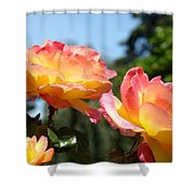 Roses Yellow Roses Pink Summer Roses 4 Blue Sky Landscape Baslee Troutman Shower Curtain