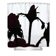 Rosy Chocolate Fireworks Shower Curtain