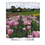 Rosy Field Shower Curtain