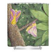 Rosy Maple Moth Gathering Shower Curtain