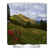 Rosy Paintbrushes Shower Curtain by Barbara Schultheis