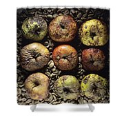 Rotten Apples Shower Curtain