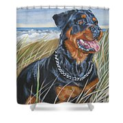 Rottweiler At The Beach Shower Curtain